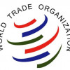 Китай пожаловался на США в ВТО из-за солнечных батарей