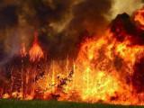 Уникальный комплекс защитит объекты нефтегаза от лесных пожаров