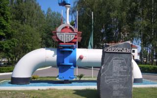 """Одного из обвиняемых в загрязнении """"Дружбы"""" поймали в Литве"""