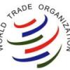 Украина настаивает на панели арбитров ВТО по вопросу транзита через РФ