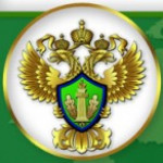 ПНГ и российский опыт