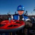 «Газпром нефть» ищет подрядчиков для Приобки и Пальяна.