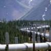 """Казахская """"Тенгизшевройл"""" возобновляет поставки нефти по трубопроводу Баку-Тбилиси-Джейхан"""