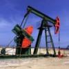 ONGC и PVEP договорились о совместной разработке новых месторождений в Узбекистане