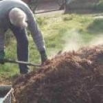 На Украине собираются добывать газ из навоза и семечек