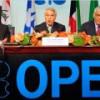 Саудовская Аравия думает о восстановлении квоты ОПЕК на добычу нефти