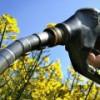 В долгосрочной перспективе Россию ждет дефицит бензина – вся надежда на альтернативное топливо