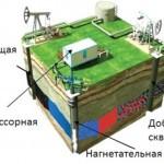 """Schlumbergr станет партнером """"Газпром нефти"""" по разработке баженовской свиты"""
