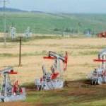 """""""Татнефть"""" не отказывается от добычи сверхвязкой нефти в Татарстане"""