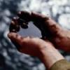 В Узбекистане обвиняют компанию Tethys в хищении нефти