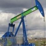 OMV вошла во вкус работы в России и хочет купить новые активы