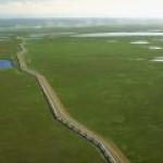 На Аляске открыто крупнейшее за 30 лет месторождение нефти в США