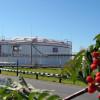 """""""Сургутнефтегаз"""" увеличил прибыль в I полугодии на 0,5%"""