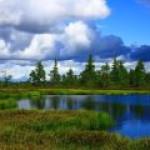 Добыча нефти в Югре падает по естественным причинам