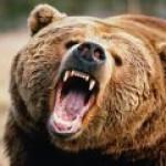 """Стратег JP Morgan: у русских """"болевой порог"""" ниже, чем у европейцев и американцев"""