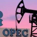 Эксперты ОПЕК подготовили предложения к саммиту по ограничению добычи нефти