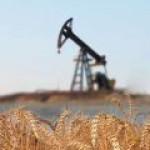 Россия и Иран договариваются о схеме «зерно в обмен на нефть»