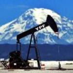 Аргентина хочет наладить более тесные отношения с РФ в области энергетики