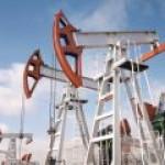 Крым просит избавить его от налога на добычу нефти