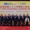 Страны АТЭС договорились диверсифицировать энергоносители