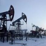 Роснедра: России хватит нефти более чем на два десятка лет