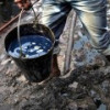 """Нигерия объявила, что за 10 лет реализует план """"Нулевая нефть"""""""