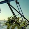 США готовятся развязать энергетическую войну с ОПЕК и ОПЕК+