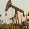 Нефтяники Британии недовольны ситуацией по нефти