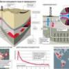 Сланцевые производители углеводородного сырья теряют деньги на воде