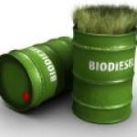 В США открылся первый в мире полностью экологичный завод биотоплива