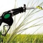 Найден новый способ переработки отходов в биотопливо