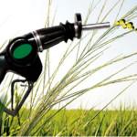 Из отходов кукурузы научились получать водород для автомобилей