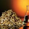 МЭА прогнозирует прорыв в области биоэнергетики