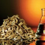 Финляндия начала промышленное производство бионефти для автомобилей