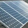 Солнечную электростанцию построят на плантации манго в Австралии