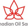 Один из нефтегигантов Канады борется против враждебного поглощения