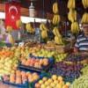 Турция сильно уменьшила экспорт товаров в Россию еще до атаки на Су-24