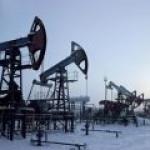 """Нефтекомпании РФ могут снизить добычу из-за проблем с """"Дружбой"""""""
