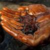 """Пятая часть доказанных запасов нефти и газа Мексики """"испарилась"""""""