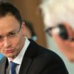 """Глава МИД Венгрии увидел двойные стандарты ЕС по отношению к """"Северному потоку-2"""""""