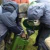 """""""Укргазобыча"""" красит бензин и дизтопливо, пытаясь защититься от воров"""