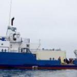 Ученые Калифорнии планируют заправлять морские суда биотопливом