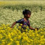 """Business Insider: Топ-10 """"развивающихся"""" рынков будущего"""