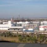ЛУКОЙЛ хочет запустить последний свой завод на Украине, заявил Насалик