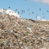 Китай построит завод по производству авиационного биотоплива из ресторанных отходов