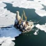Минприроды побуждает госкомпании наращивать разведку на шельфе в Арктике