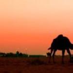 В Египте открыто новое месторождение газа