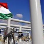 """""""Роснефть"""" решила подстраховаться из-за военной операции в Сирии"""