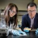 Создан метод 100-процентного восстановления отработавших батарейных катодов