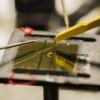 В Мичиганском университете придумали, как делать солнечные батареи из пластмассы